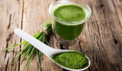 Sữa tảo giảm cân an toàn cho sức khỏe người dùng