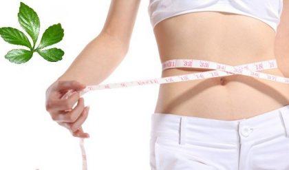 Vóc dáng thanh mảnh, vòng eo thon gọn nhờ sử dụng thạch dứa giảm cân